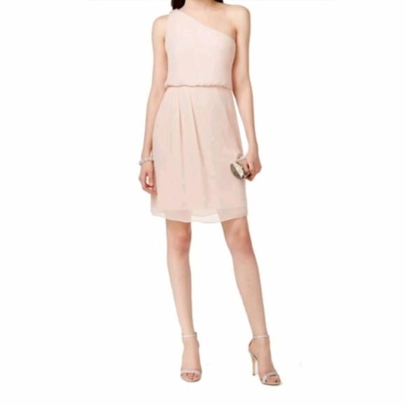 446ffc4cb938 Adrianna Papell Dresses | Chiffon Blush Pink Dress Sz 14 | Poshmark